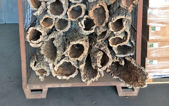 קליפות שעם וגזעי עץ אלון השעם למכירה ממחסני היבואן הרשמי - ארודור פרקטים ושעם