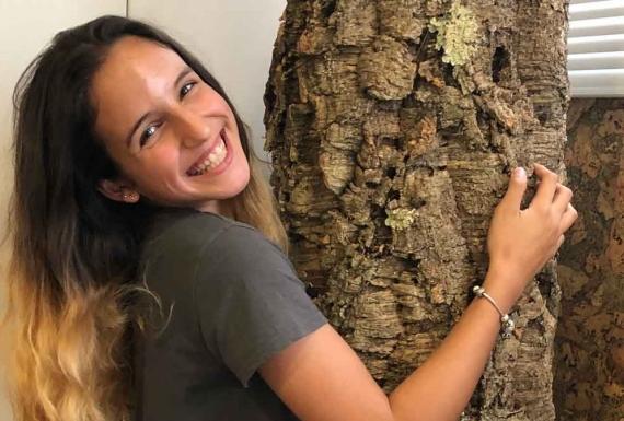 גזע של עץ שעם טבעי